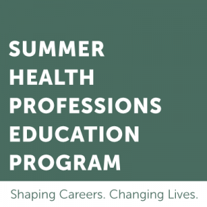Summer Health Professionals Education Program